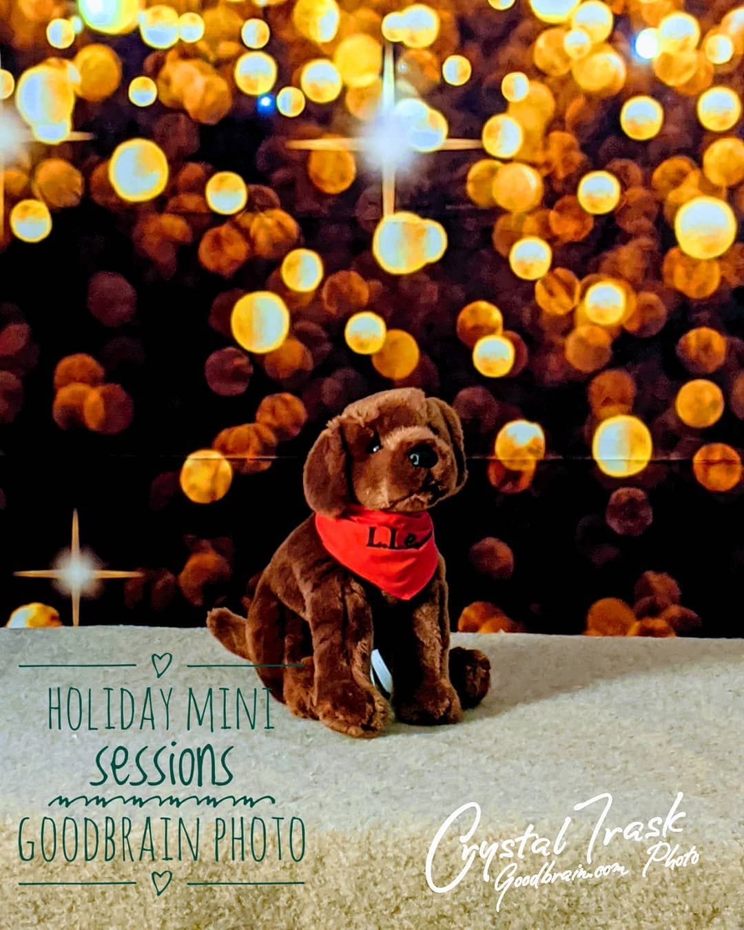 Holiday Mini Sessions 2019…